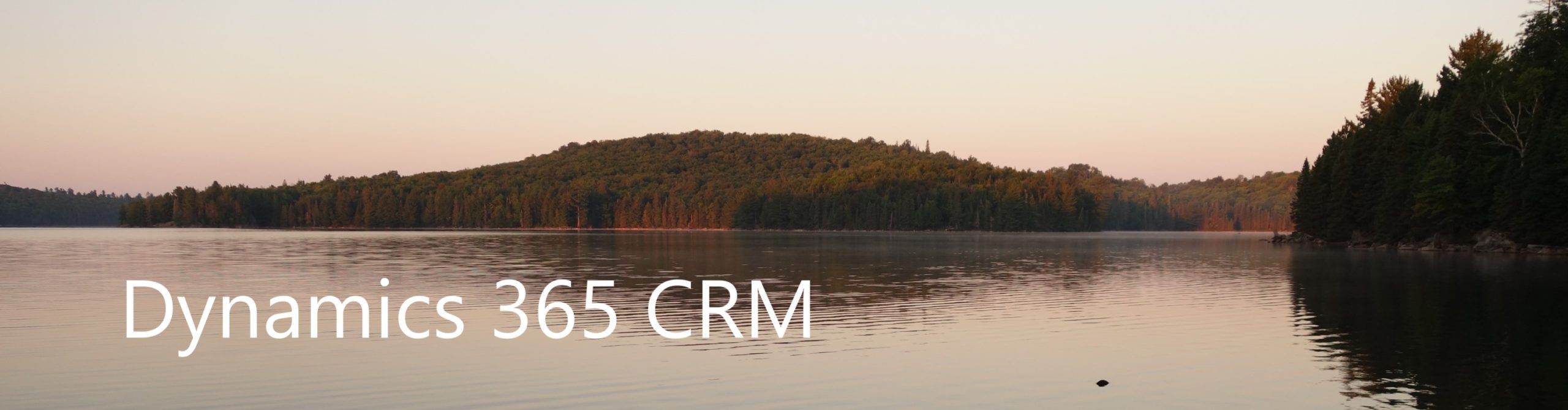Dynamics 365 CRM